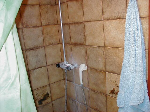 bild på mögelskada i dusch
