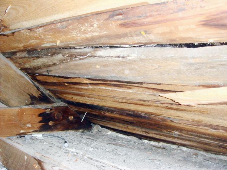 Fuktskador på vinden eller i gölvbjälklag